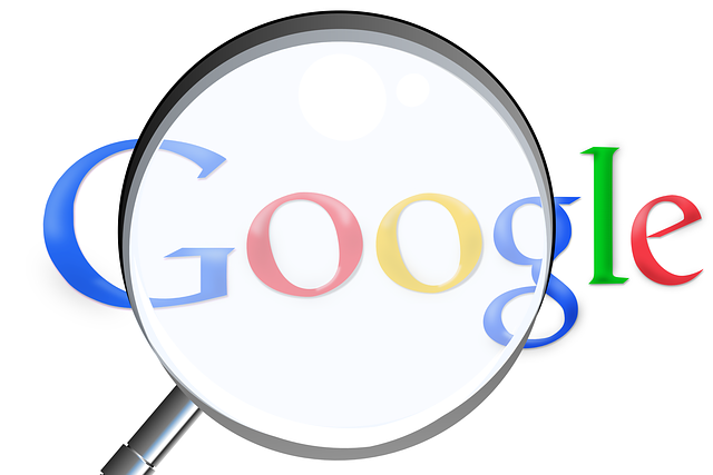 dereferencement google